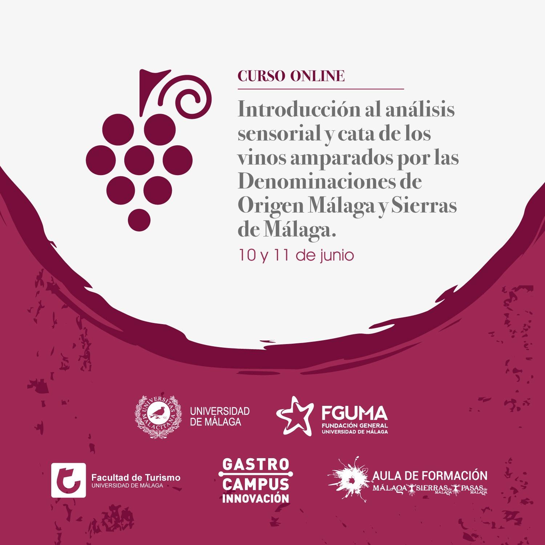 Cartel Curso online-cata de vinos
